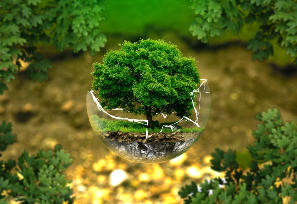 Etudes sur l'environnement